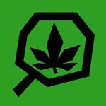 Legalización de la marihuana: Uruguay en la mira