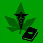 Cannabis medicinal: beneficios, necesidades y la legislación al debe
