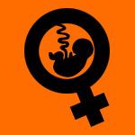 Despenalización del aborto en Chile: Una asignatura pendiente.