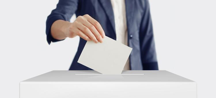 Votar por votar